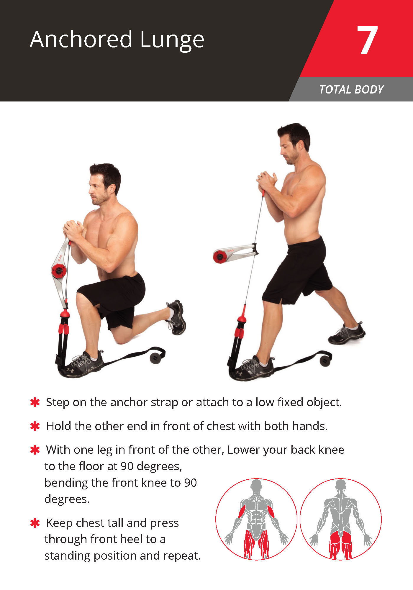 7 Anchored Lunge